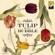 Tulip Bubble (2017)