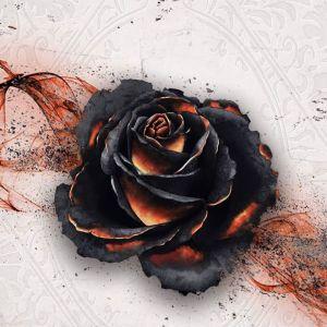 Black Rose Wars (2019)