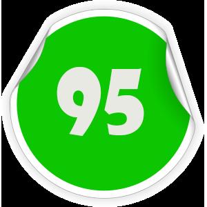 95 Sticker