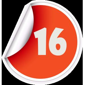 16 Sticker