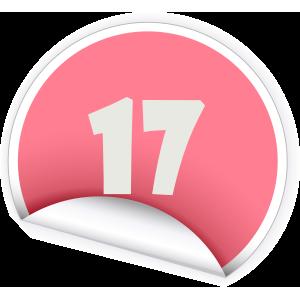 17 Sticker